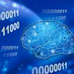 二進数と脳